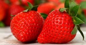strawberries-3089148__340[1]