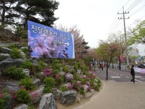 DSC03614수정