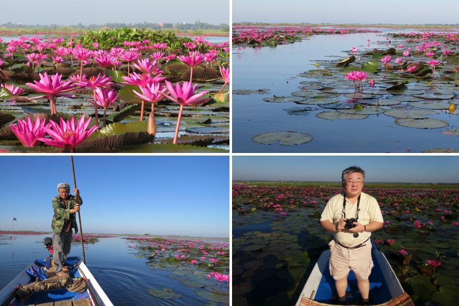 chobl-lotus-lake