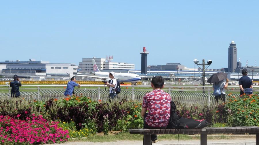 NRT-sakura-no-yama-IMG_4338