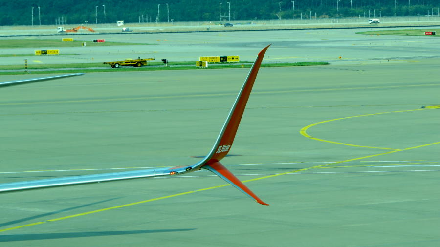 dual-feather-winglet-7C+