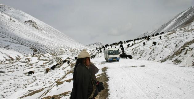 tibet-land-IMG_0929