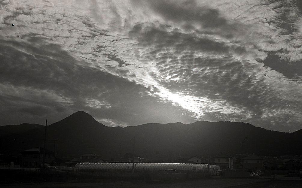어느 일본 매니아가 콘타플렉스 TLR(렌즈=Sonnar 5cm/f 2)로 찍은 사진들