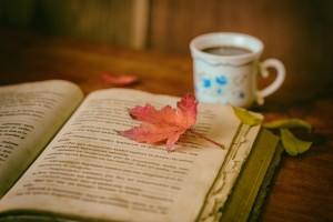leaves-1076307_1280
