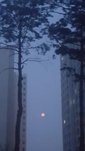 180512 아파트와 달