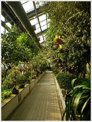 과천식물원15.JPG
