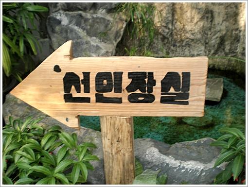 과천식물원2.JPG