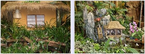 과천식물원6.jpg