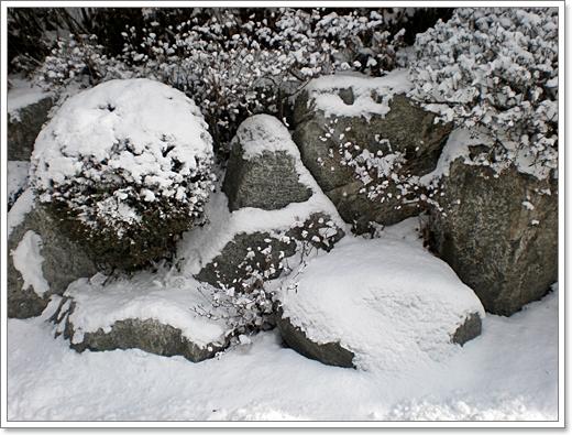 눈23.JPG