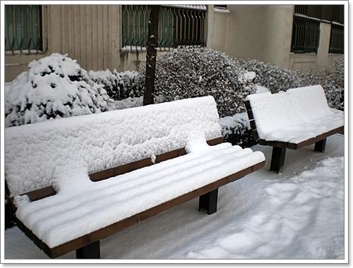 눈_13[1].JPG