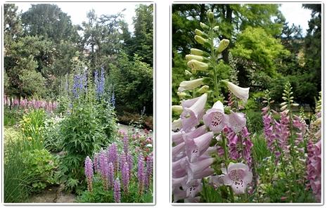 식물원6.jpg