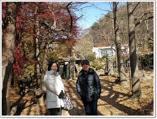 가을사진2.JPG
