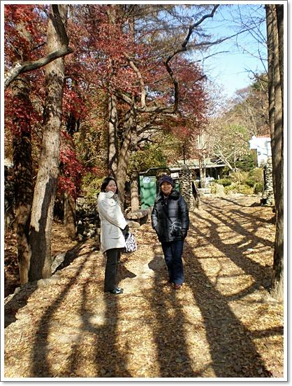 가을사진3.JPG