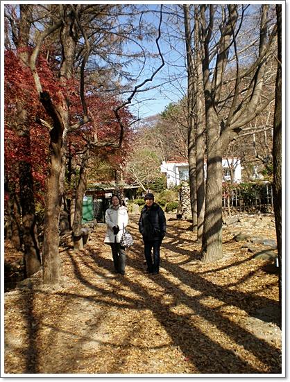 가을사진4.JPG