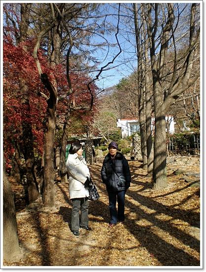 가을사진5.JPG
