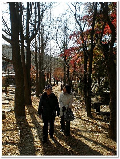 가을사진6.JPG