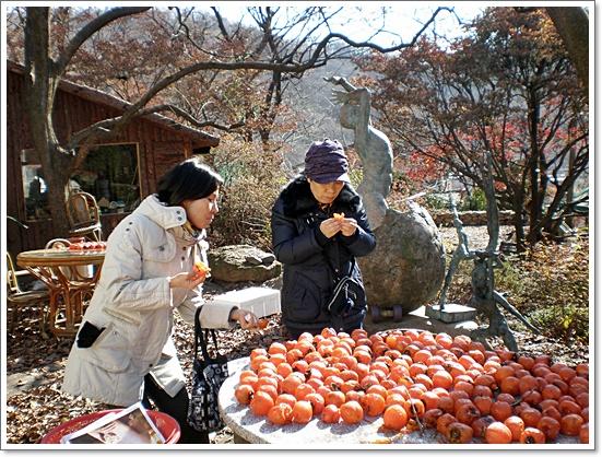 가을사진10.JPG