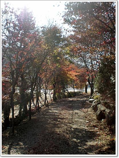 가을3.JPG