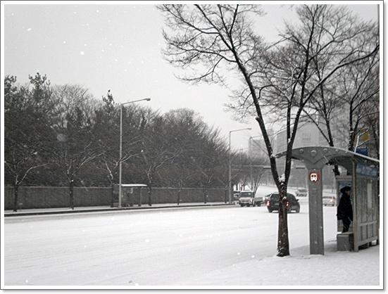 눈10.JPG