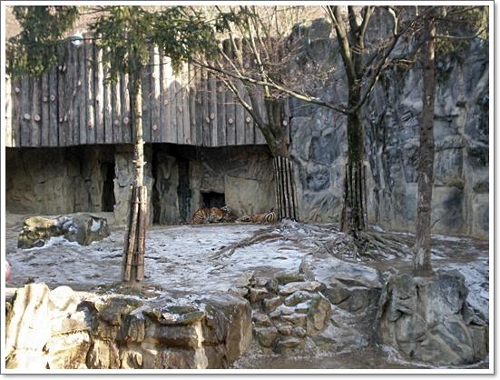 동물원16.JPG