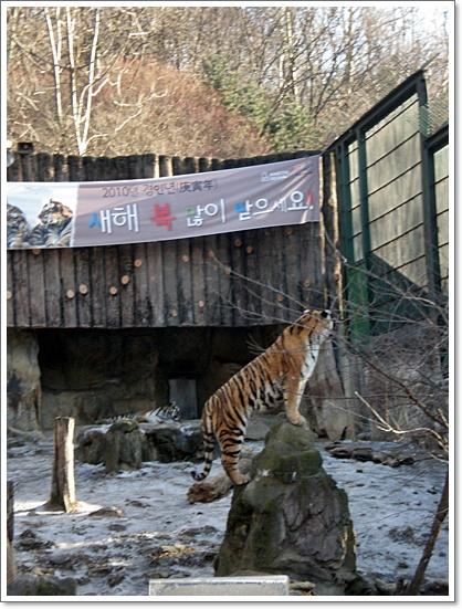 동물원17.JPG