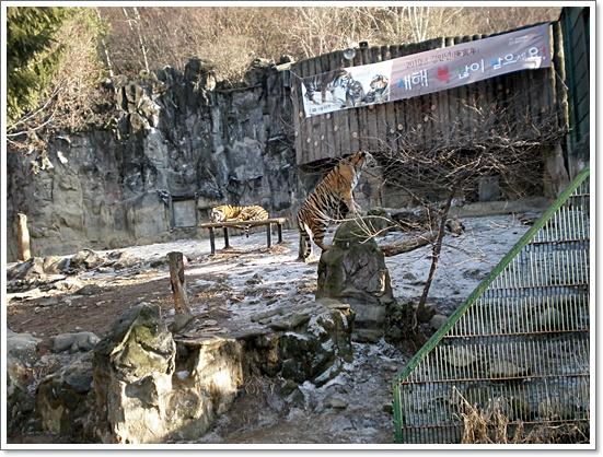 동물원18.JPG