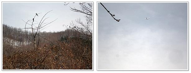 백운호수산책8.jpg