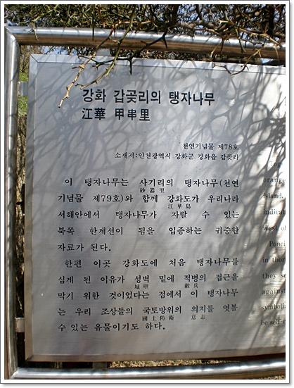갑곶돈대14.JPG