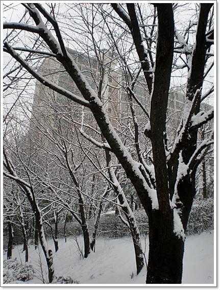 눈아이2.JPG