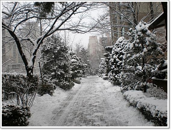 눈아이4.JPG