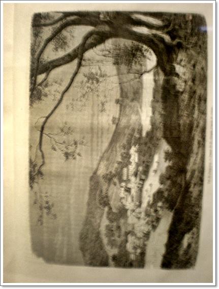 외규장각22  쥐베르의 소나무.JPG