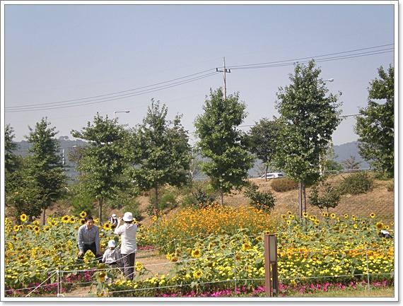 구리시민공원14.JPG