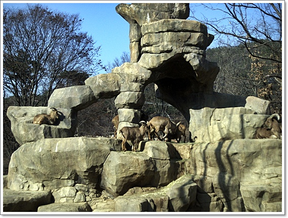 동물원6.JPG