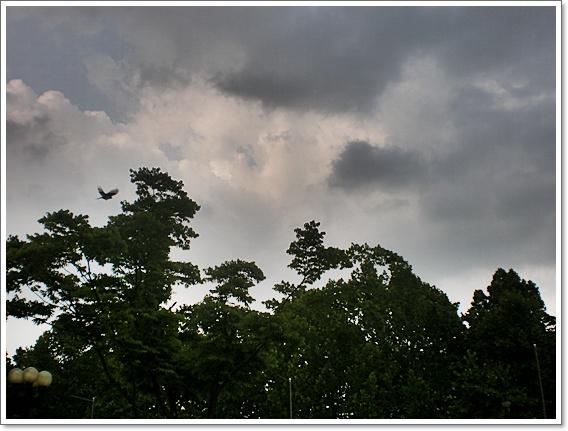 가중앙공원13.JPG