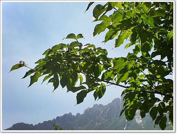 가울산바위8.JPG