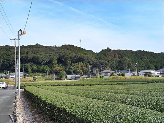 시즈오카29.JPG