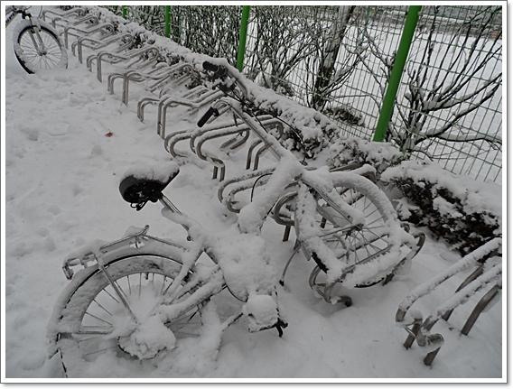 눈이12.JPG