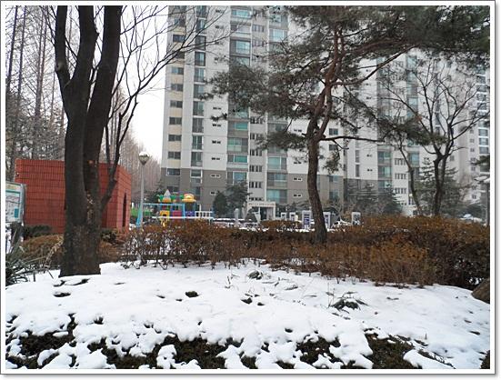 겨울3.JPG