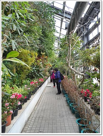 식물원18.JPG