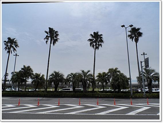 가고시마30.JPG