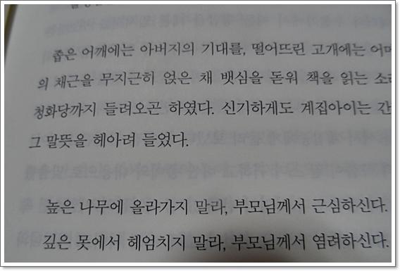 불의꽃5.JPG