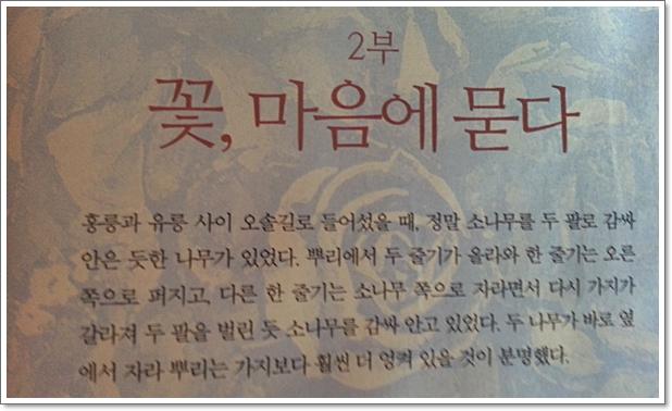 문학책리뷰5.jpg