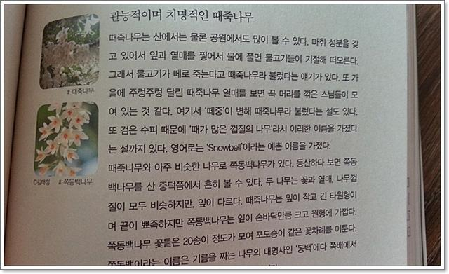 문학책리뷰12.jpg