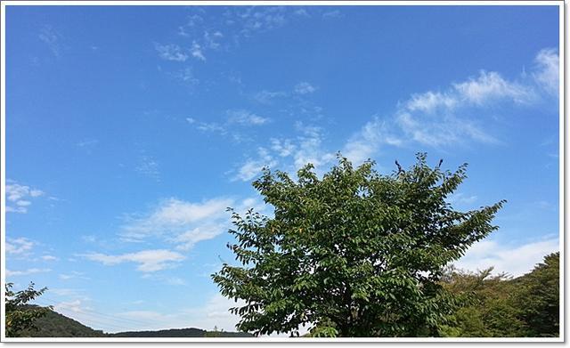 인천하늘16.jpg