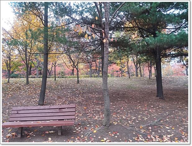 가을5.jpg