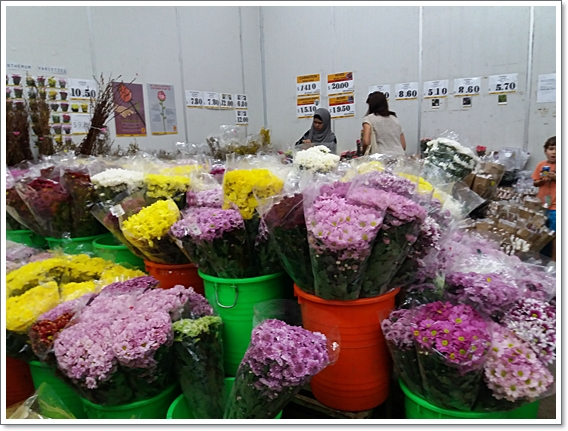 꽃시장13