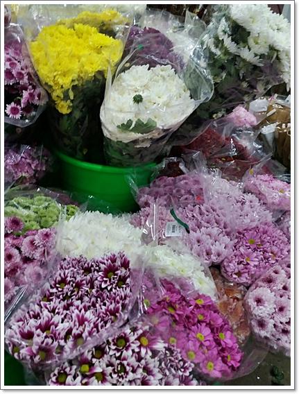 꽃시장15