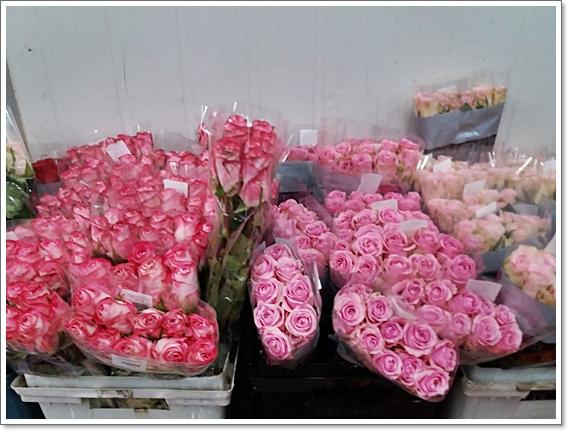 꽃시장19