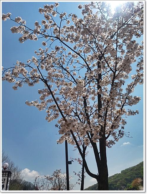 남한산성6
