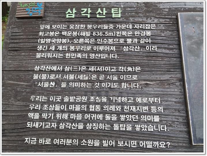 솔밭공원5